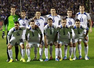 Bosnia World Cup Squad 2014