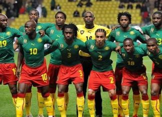 Cameroon World Cup Squad 2014